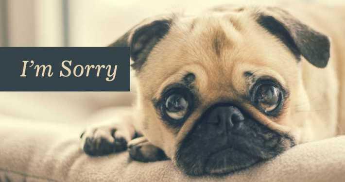 Scusa in Inglese: sorry o excuse me?